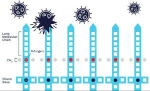 Zoono Molecule